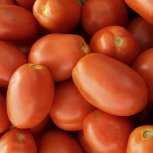 """4"""" Tomato - Roma - SOLD OUT"""