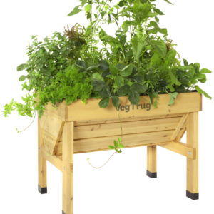 small vegetable raised garden bed natural