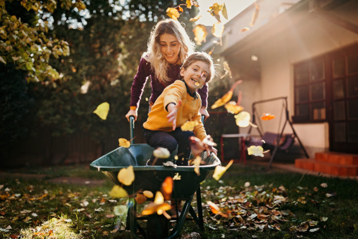 Your Fall Lawn Care Guide