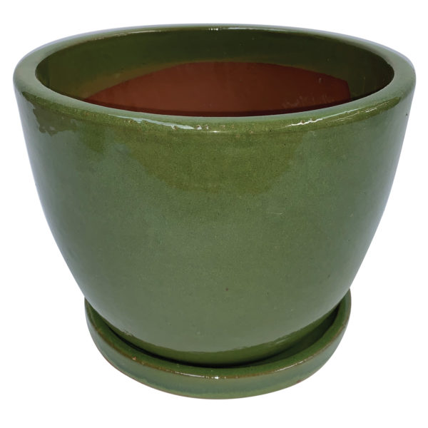 egg pot with attached saucer green