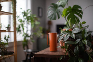 Keeping new plants separate from existing plants