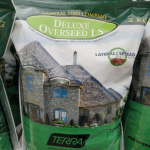Deluxe Overseed Lawn Seed 2kg